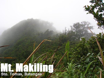 mt.-makiling