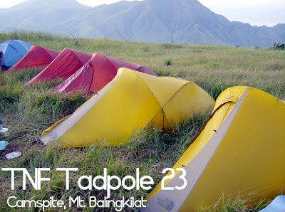 Tadpole tents compared Jetstream Apexus and the original TNF & Tadpole tents compared: Jetstream Apexus and the original TNF ...