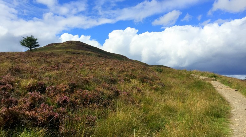 Hiking matters #481: Scotland's West Highland Way from Drymen to Balmaha via Conic Hill