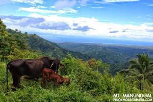 Mt. Manunggal, Cebu