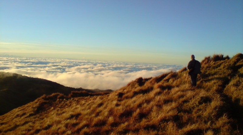 pulag - akiki trail1