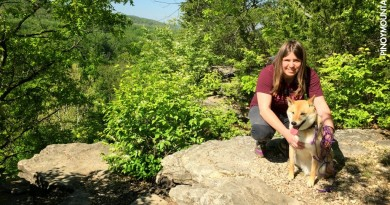 Ten tips for hiking with your dog