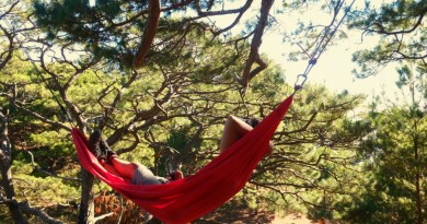 A beginner's guide to hammock camping
