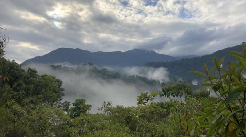 Hiking matters #614: Mt. Bintuod, possibly the highest Sierra Madre peak