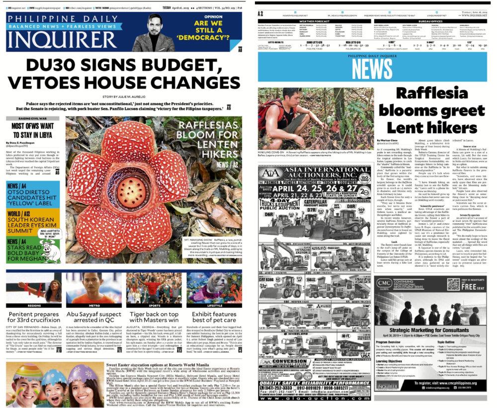 rafflesia inquirer